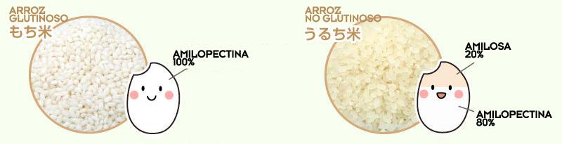 Arroz glutinoso y arroz no glutinoso