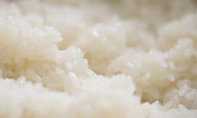 gohan arroz japonés