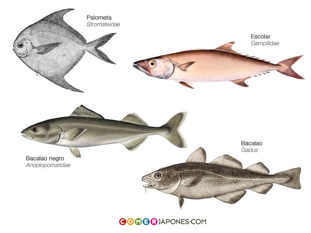 pez-mantequilla2