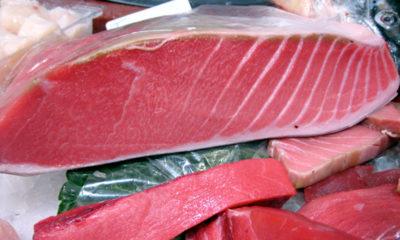 Atún rojo - Trucos de chef